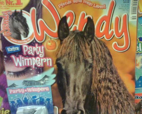 Die neue Wendy - schnapp dir die stylischen Partywimpern für dein Pferd!