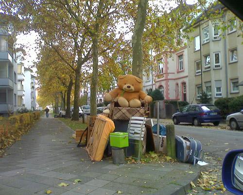 Süßer, knuddeliger Teddybär sucht ein neues zu Hause. Chiffre 0815