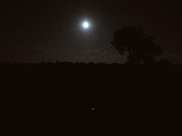 Trebur bei Nacht