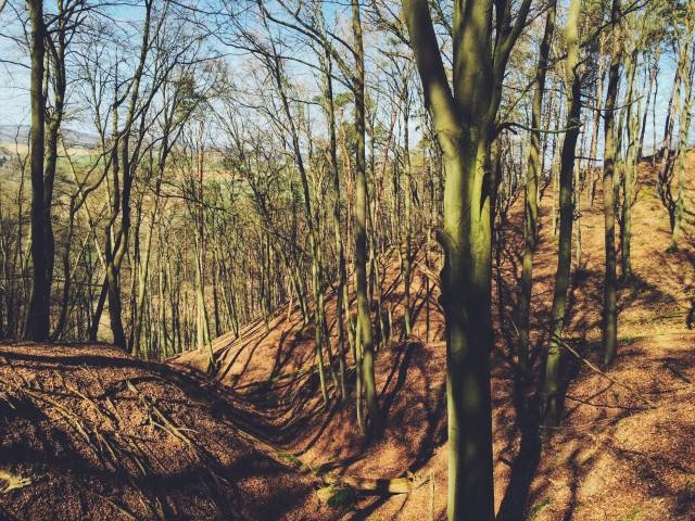Lahn-Höhenweg