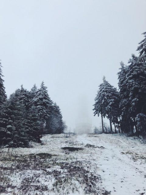 Großer Feldberg im Taunus
