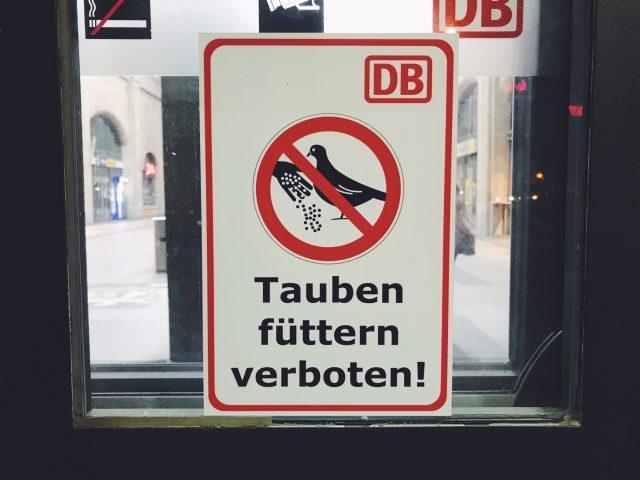 German Angst Teil 4
